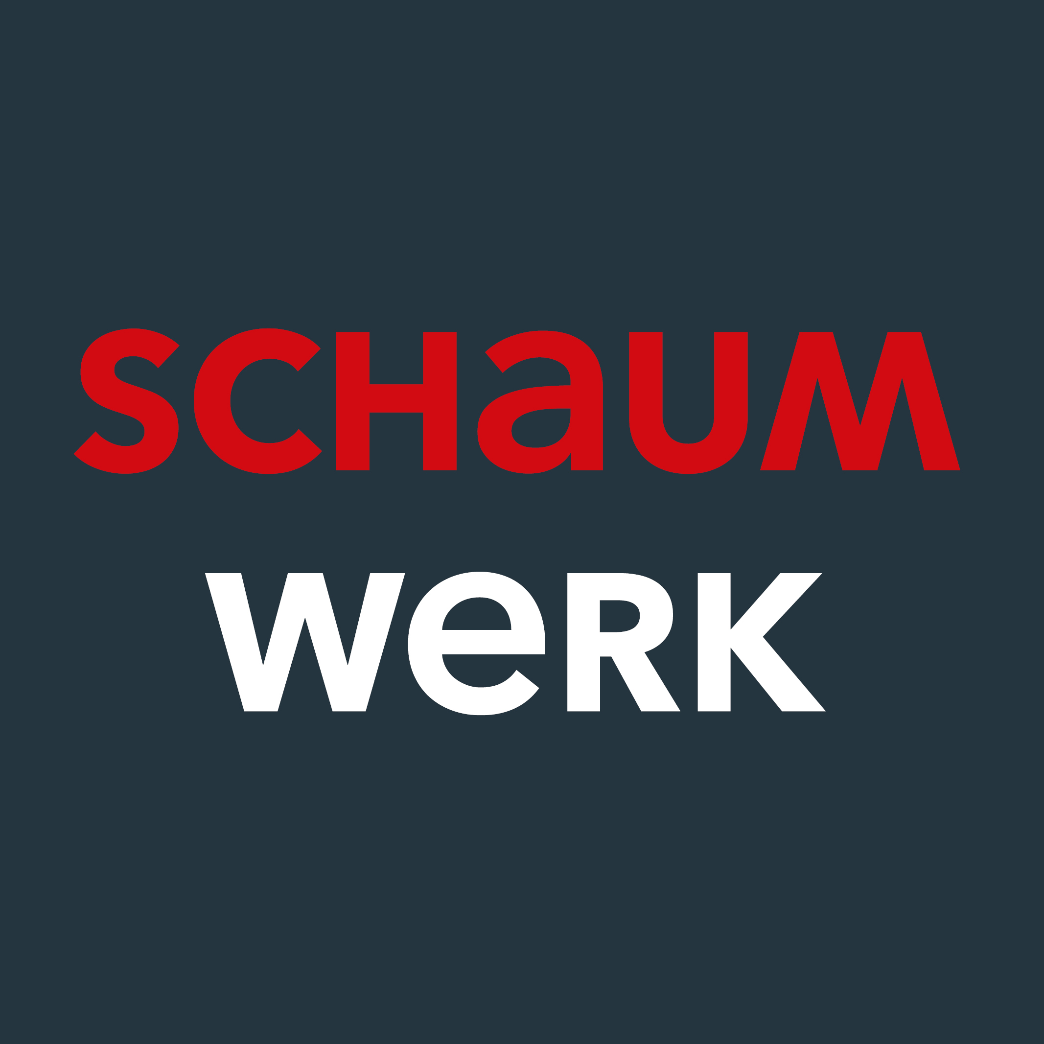Schaumwerk Icon